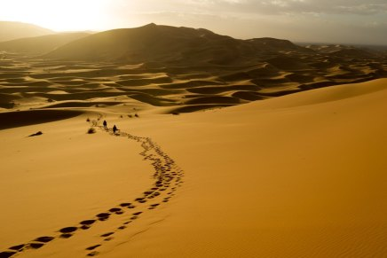 रेगिस्तान में दोमित्र