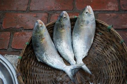 मछली की टोकरी