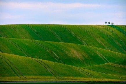कितनी ज़मीन? : तॉल्स्तॉय कीलघुकथा