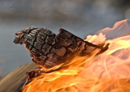 दोस्ती की आग – The Fire ofFriendship