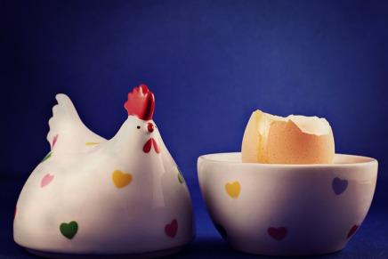 अंतरिक्षयात्री ताजे अंडों के लिए यान में मुर्गियां लेकर क्यों नहींजाते?