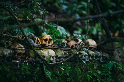 हम क्यों मरते हैं? मृत्यु क्यों होतीहै?